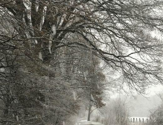 Der Winter wird kommen